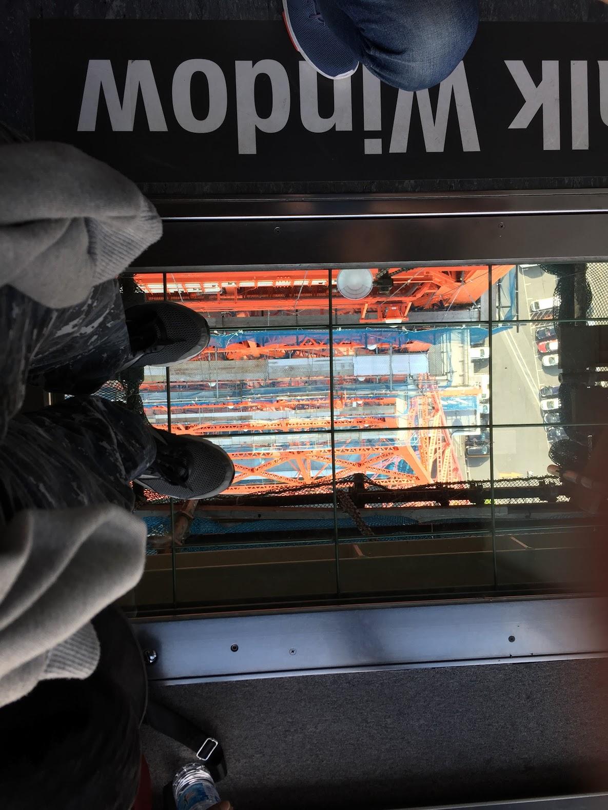 Skywalk Window