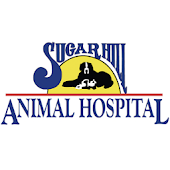 SugarHillAnimal