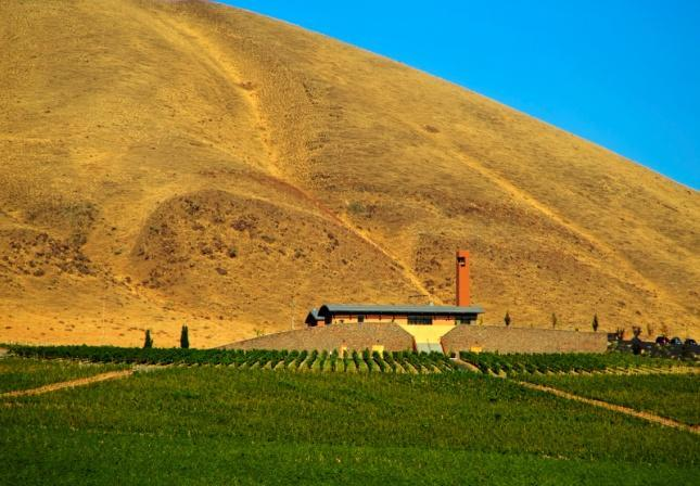C:\Users\rduvall\Pictures\Washington Vineyards\VL040.jpg