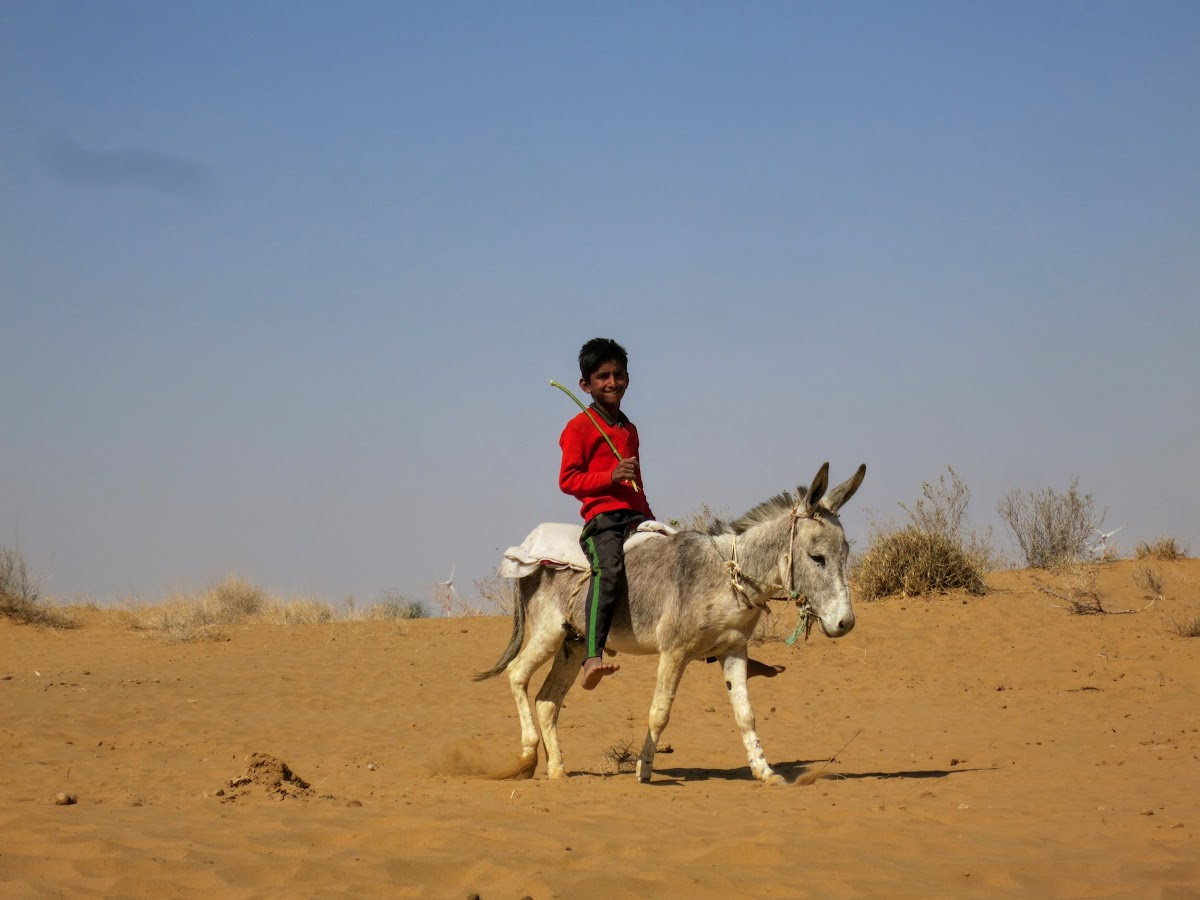 India. Rajasthan Thar Desert Camel Trek. Kid riding his donkey