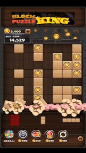 Block Puzzle King Mod Apk: Wood Block Puzzle 6
