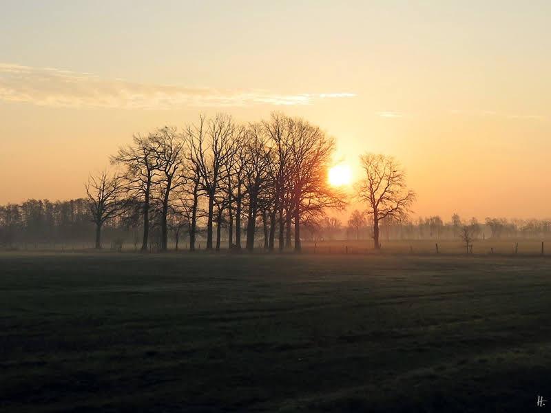 2019-02-14 LüchowSss morgens gegen ach Uhr