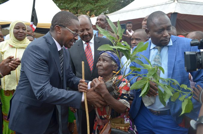 Governor Mwangi Iria Giving Out Free Avocado Seedlings to Residents of Muranga County
