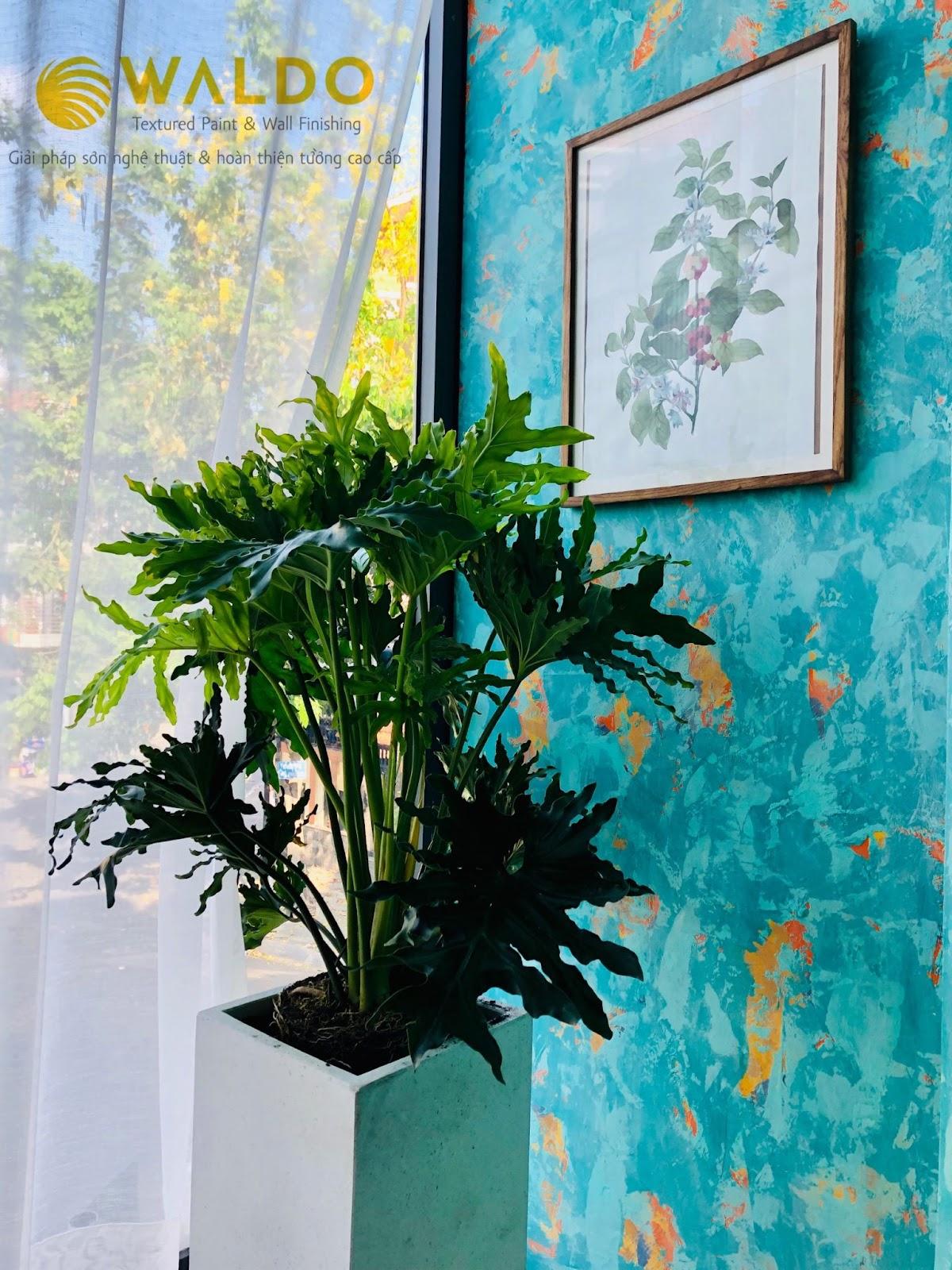 Sơn hiệu ứng Waldo - Vị trí sơn hiệu ứng - Sơn hiệu ứng thiết kế riêng Waldo đẹp mắt cho vị trí bề mặt tường
