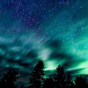 Glow  by Tammy Scott - Landscapes Starscapes ( blue, green, stars, northern lights, long exposure, night shoot, night sky )