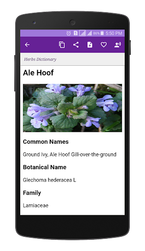 Herbs Dictionary screenshot for Android