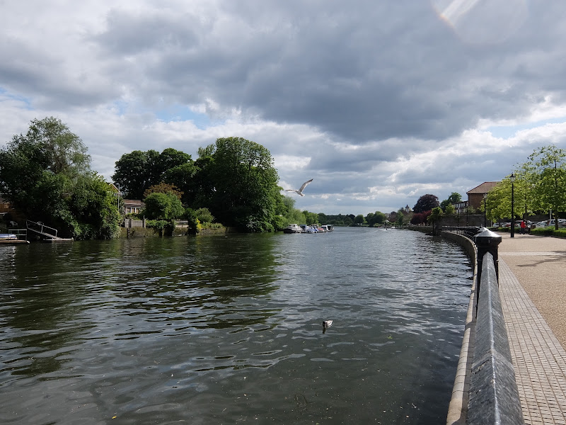 12-twickenham-riverside-a-2-min-walk-to-king-st