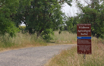 Photo: Wildhorse Agric Buffer - NW entrance