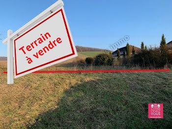 terrain à Bercenay-en-Othe (10)
