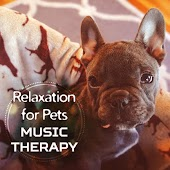 Relaxation for Pets: Music Therapy – Calm Dog, Happy Owner, Smooth Music for Pet Spa, Sleep Music, Home Alone, Stress Relief Sounds