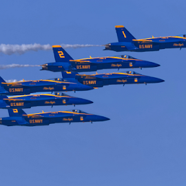 Blue Angels 772 by Raphael RaCcoon - Transportation Airplanes