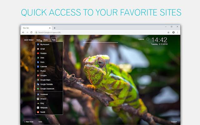 Chameleon Wallpaper HD Chameleons New Tab