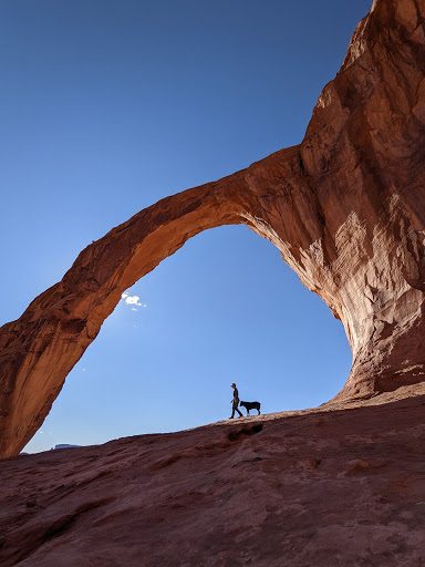 Wide-angle photo of a person hiking with their dog along a stunning desert landscape.