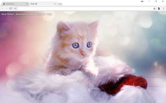 Cute Cats & Kittens New Tab Wallpapers Themes