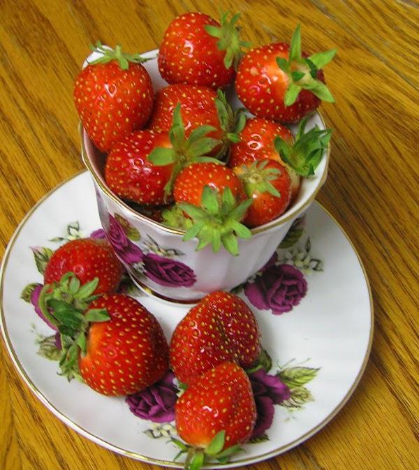 Nonna Rosa's Chocolate Strawberry Cheesecake Bites Recipe