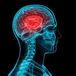 MACE Concussion Evaluation