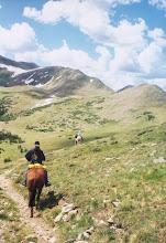 Photo: Ride up above treeline in the Taos Mountains with Rio Grande Stables
