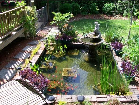 Unique Fish Pond Design Android Apps On Google Play