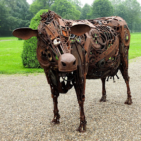 The iron cow by Bob Has - Artistic Objects Other Objects ( at, cow, rtics, iron,  )
