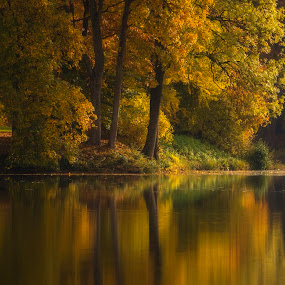 The castle garden by Buffan Walter - Landscapes Waterscapes ( sweden, reflection, tree, autumn, trees, scania, lake, yellow, autumn colors, autumn leafs,  )