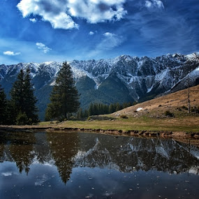 by Veronica Gafton - Landscapes Mountains & Hills ( reflection, blue, fir )