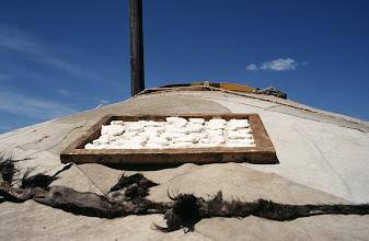 Photo: 03137 ウランバートル/牧民の家/ゲルの屋根に乳製品を干す