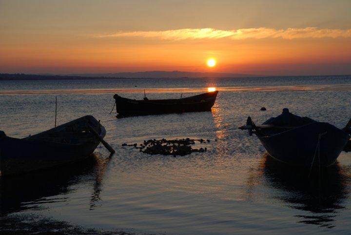 Barche Al Tramonto di dandy
