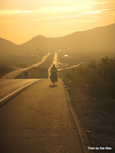 Photo: (Year 3) Day 40 - Early Morning on the Motorway