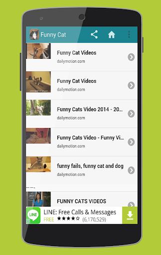 Funny Cat Videos 1