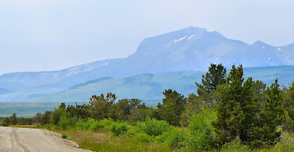 Photo: Ear Mountain in the distance - on the list for later this summer