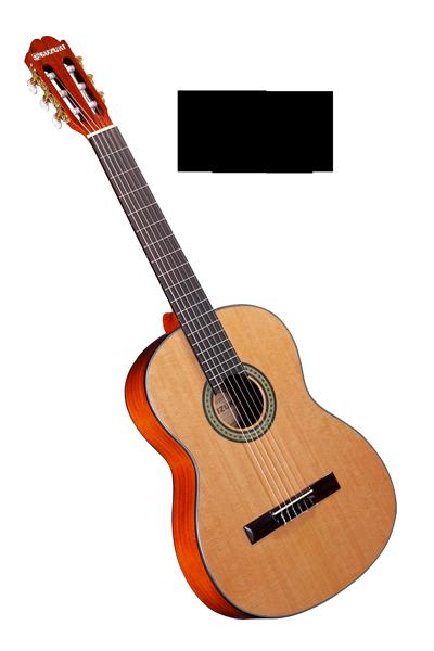 tìm hiểu về đàn guitar
