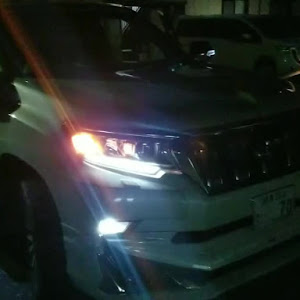 ランドクルーザープラド 150系 ガソリン 後期のカスタム事例画像 Naotoさんの2018年11月27日13:44の投稿