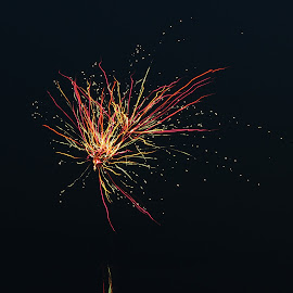 Colorful Fireworks by Gregg Dubbs - Public Holidays July 4th ( loud, sky, color, fireworks, pyrotechnics, fourth of july )