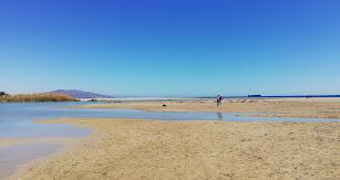 Imagen de  la desembocadura del Río Antas a la orilla de la playa de Vera.