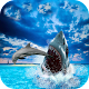Hungry Shark Attack Blue Whale Evolution Simulator