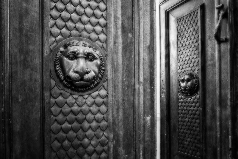 La porta dei leoni di marco.rossi.505960