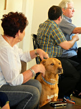 """Photo: And here's the family dog--looks like a cross between a """"Ridgeback & an Alsation!!!"""""""