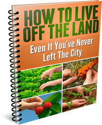 How to Live Off the Land eBook