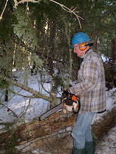 Photo: Snowshoe Trail Maintenance