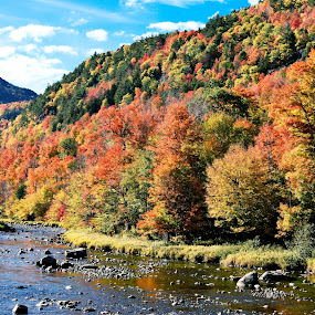 Adirondacks Stream by Andy Bigelow - Landscapes Mountains & Hills ( #landscape, #adirondacks, #stream, #autumn, #fall )