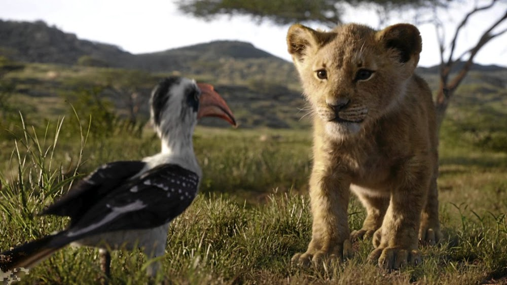 MOVIE REVIEW Does 'The Lion King' live up to the hype?