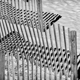 Sand Fence by Dave Walters - Buildings & Architecture Other Exteriors ( sand, sand fence, b & w, shadowe, beach, lumix fz2500,  )