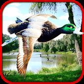 Sniper Duck Hunting