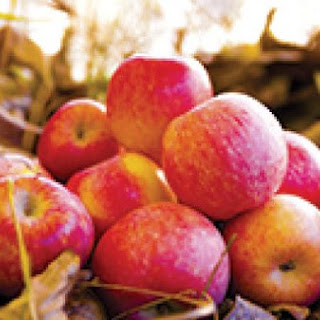Apples Let Us Savour The Flavours Of Fall