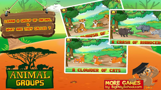 Animal Groups - Learn Animals