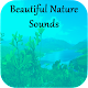 Download Beautiful Nature Sounds For PC Windows and Mac