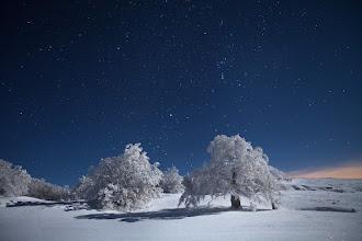 Photo: Winter Nights