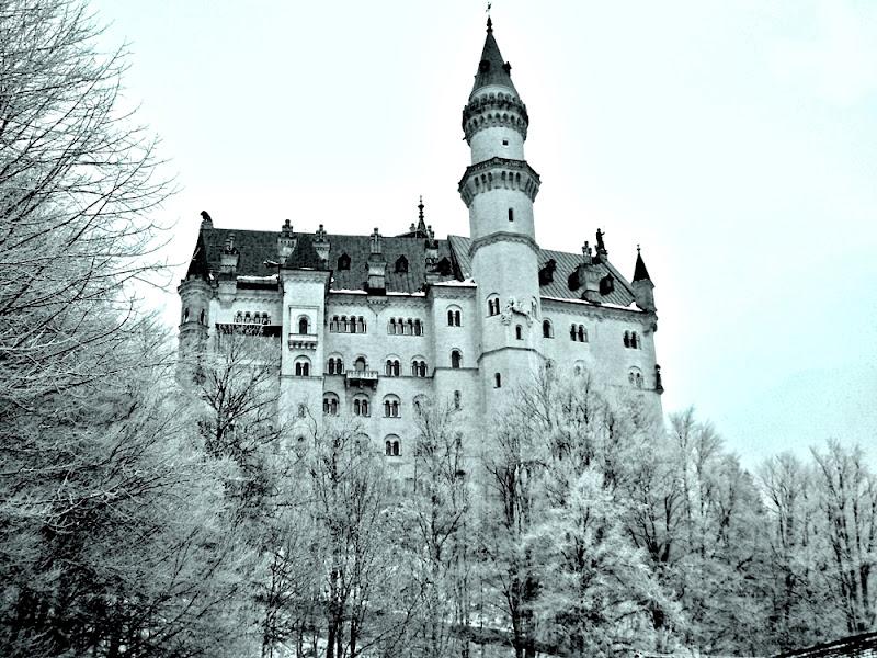 Castello Neuschwanstein (Germania)   di FransuaR