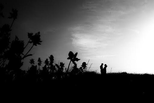 Wedding photographer Barbara Fabbri (fabbri). Photo of 23.06.2014
