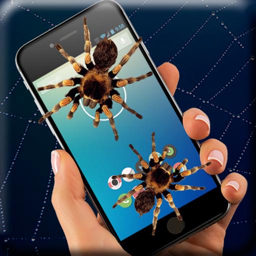 Spider on screen (app)